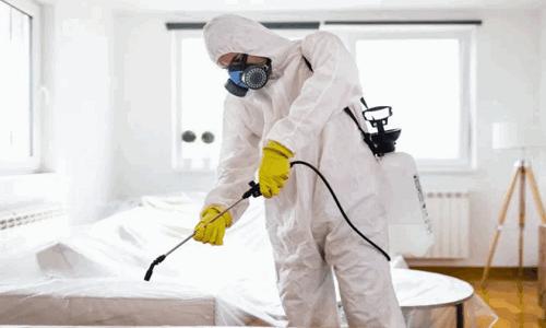 شركة تعقيم في الشارقة 0588572030 تعقيم المنازل من فيروس كورونا – شركة درة البيت